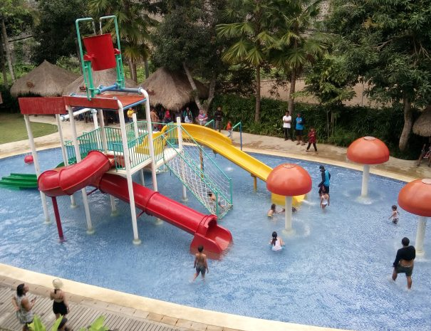 bali_zoo_swimming_pool
